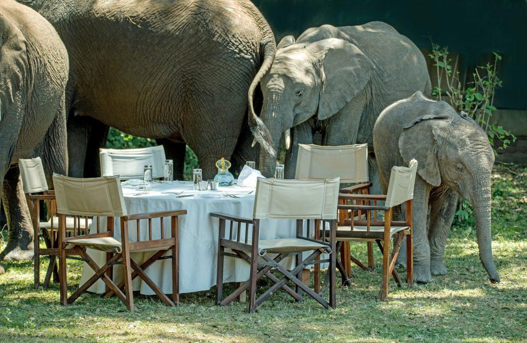 Mobile Tented Safari
