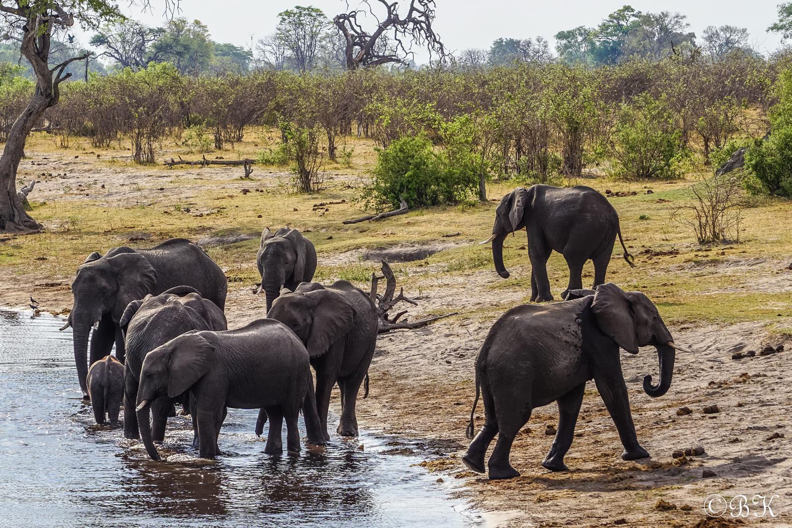 Mudumu National Park