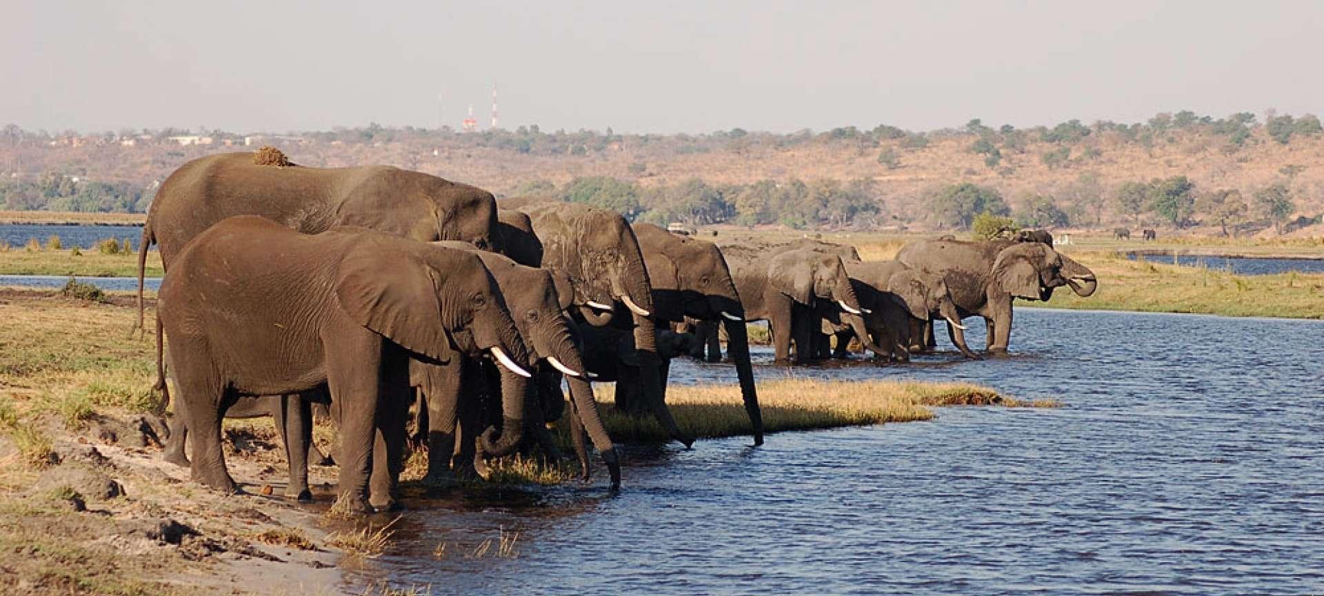 Nkasa Rupara National Park (Mamili NP)