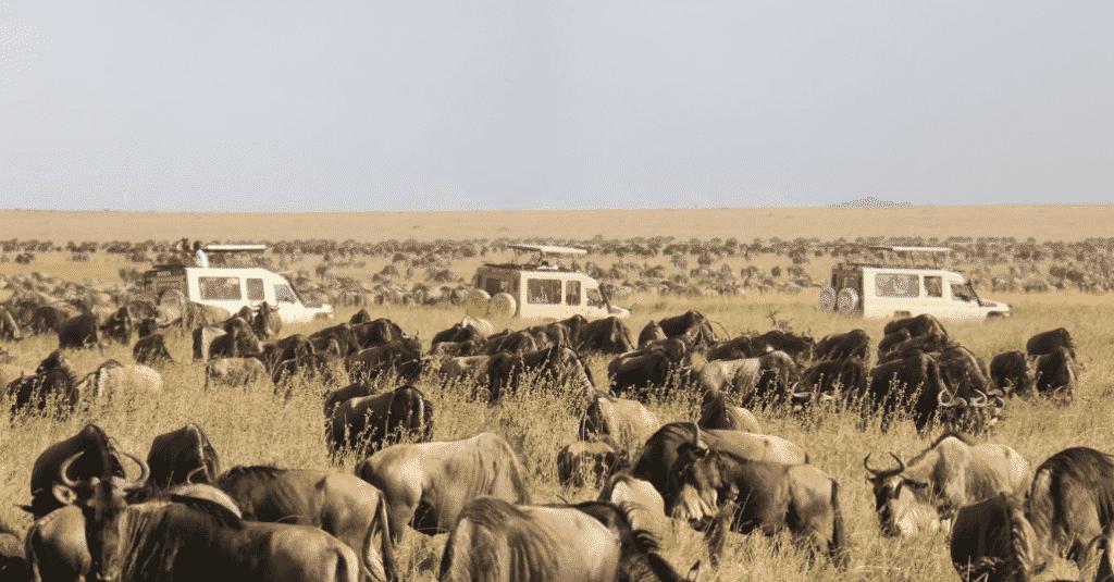 Top 10 Reasons to Visit Tanzania