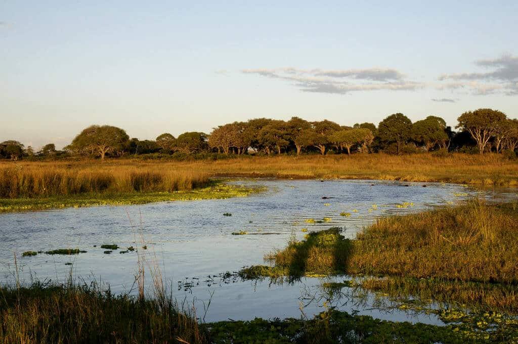 Katavi National Park
