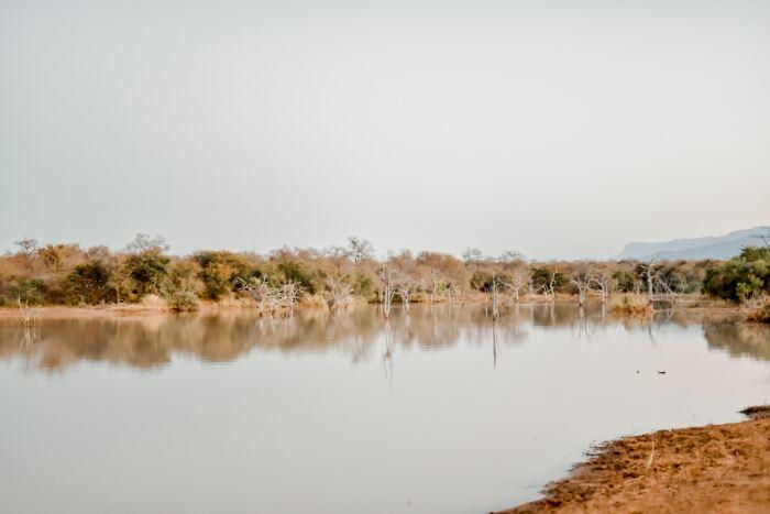 Moditlo Private Game Reserve