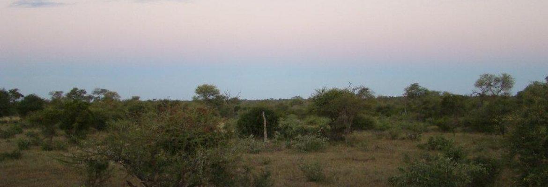 Timbavati Private Nature Reserve