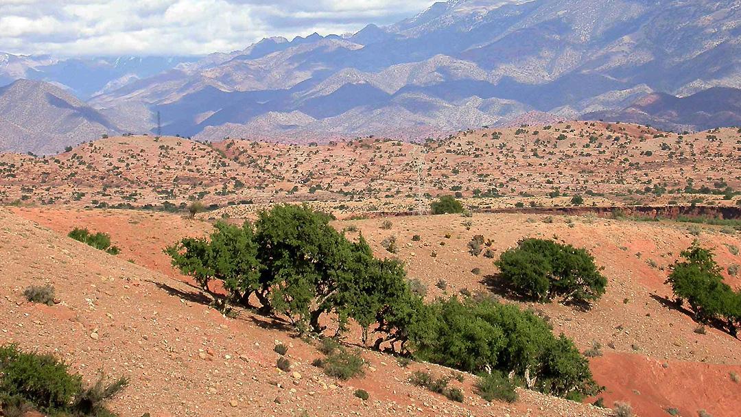 Arganeraie Biosphere Reserve
