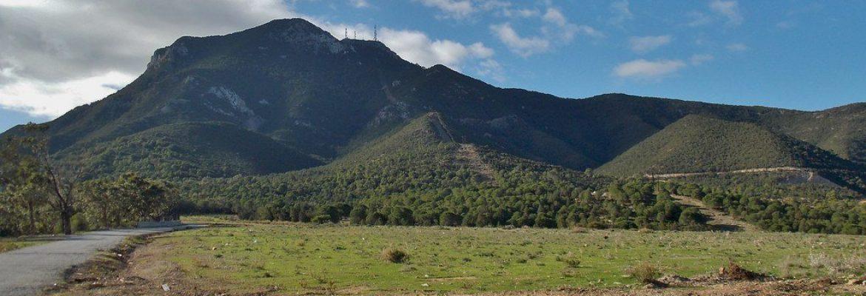 Boukornine National Park