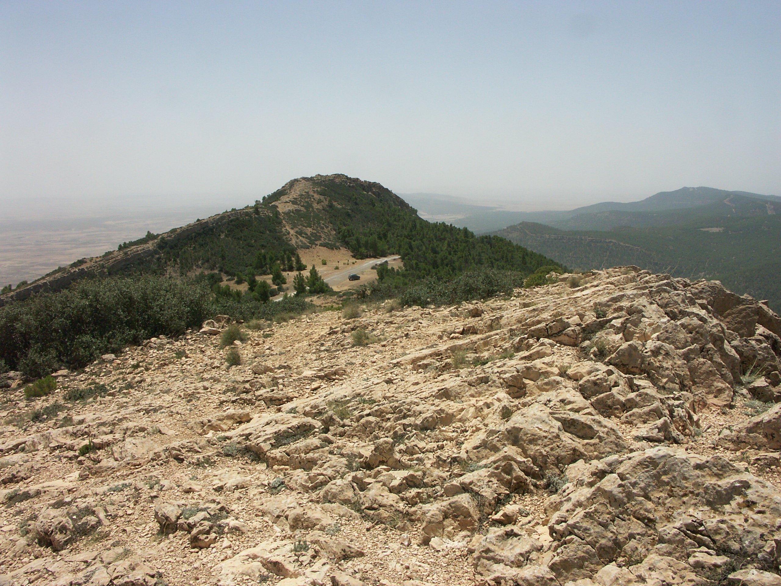Chaambi National Park