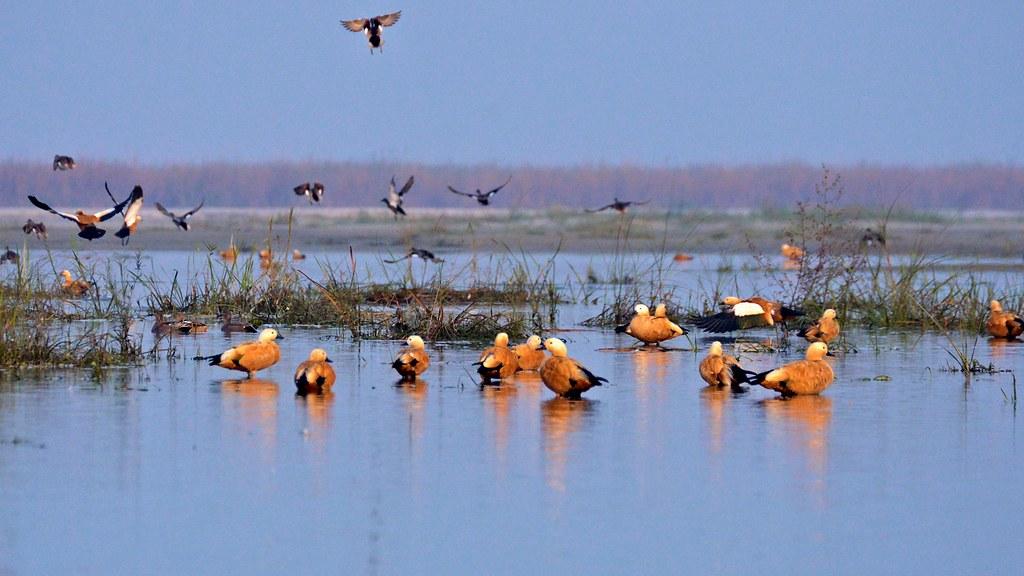 Khenifiss National Park