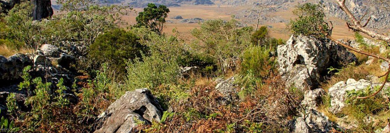 Chimanimani National Reserve