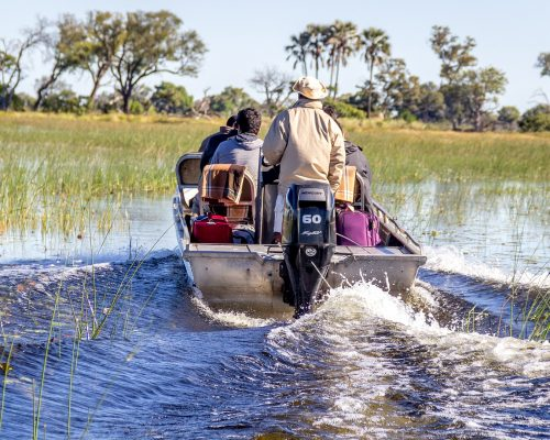 boat safari3